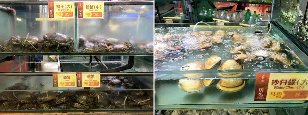 大茄來Welcome Seafood Restaurant