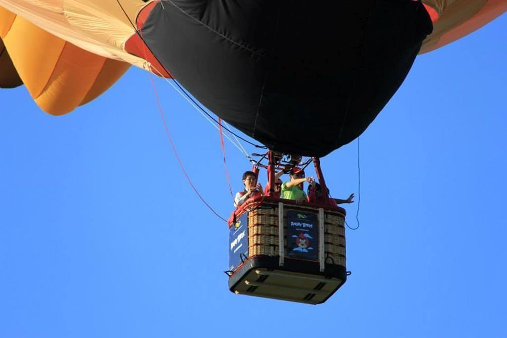 台東熱氣球自由飛空中遊覽