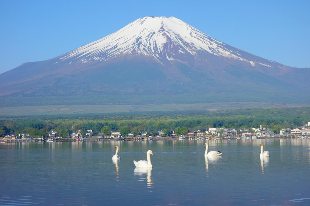 山中湖 Yamanakako