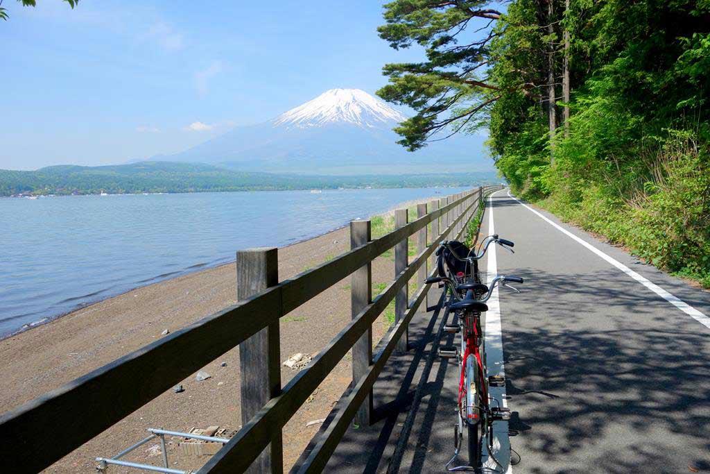 山中湖 腳踏車 自行車