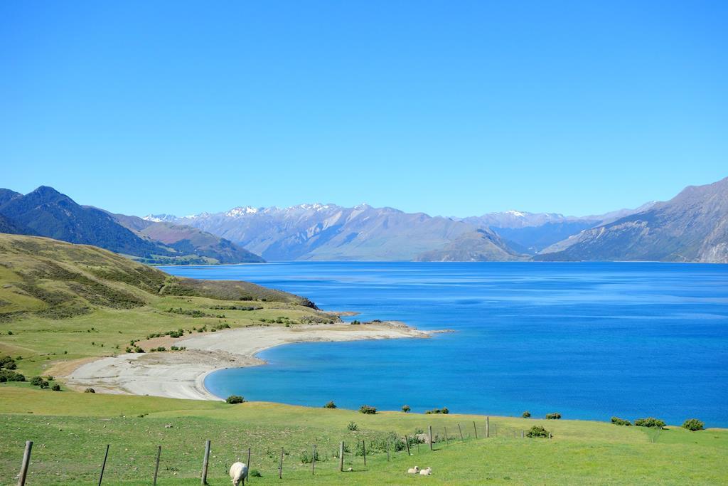 紐西蘭 自由行 旅遊