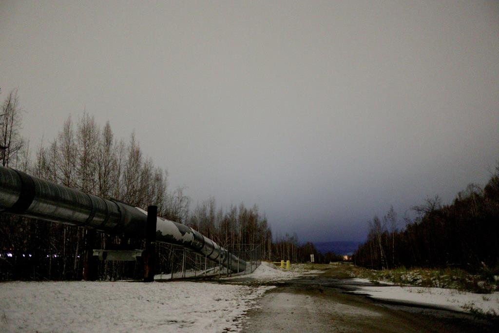 Alaska Pipeline Viewing Point