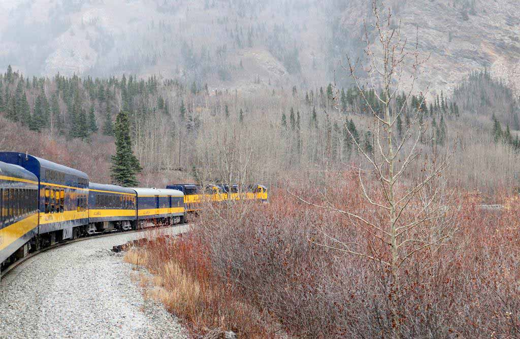 Alaska Railroad Aurora Winter Train