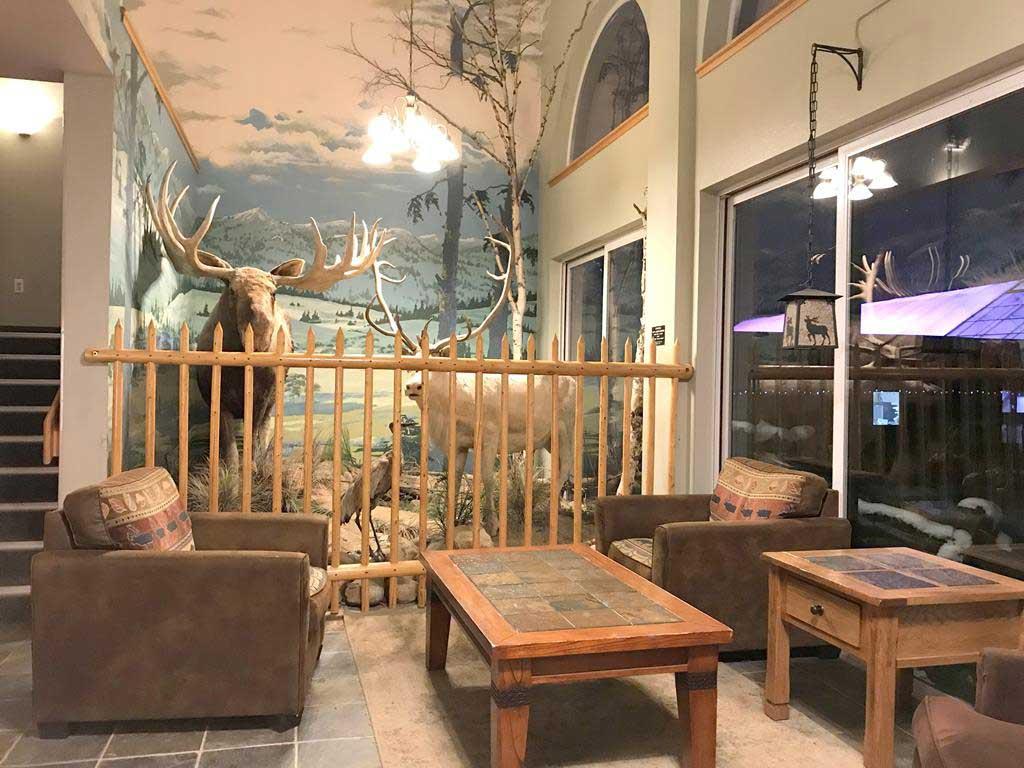 Room of Chena Hot Springs Resort