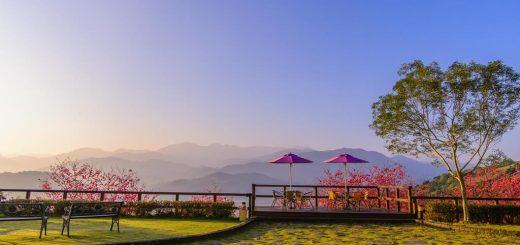 宜蘭雅廬景觀渡假別墅