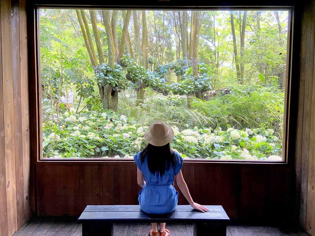 森林美術館