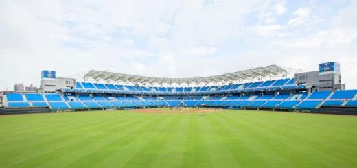 桃園國際棒球場
