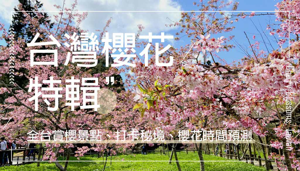 taiwan-cherry-blossoms
