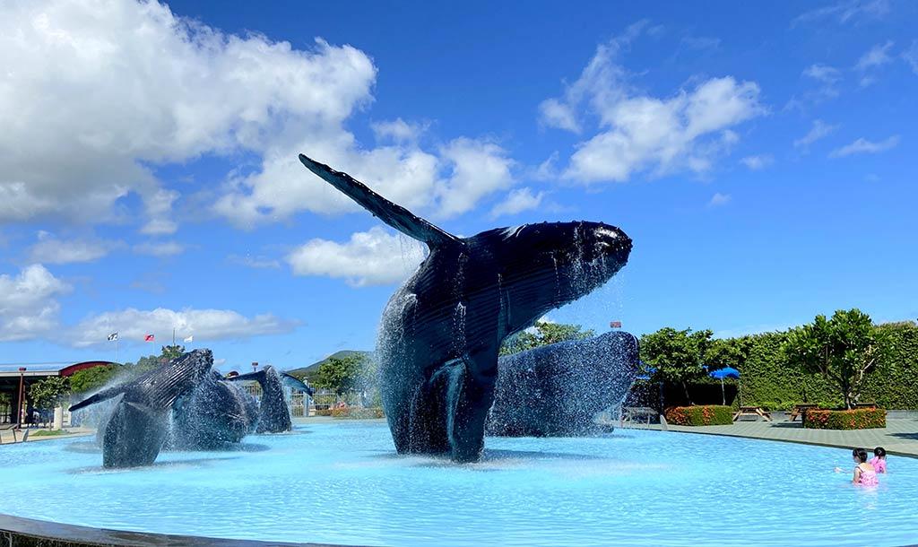 national-museum-of-marine-biology-and-aquarium